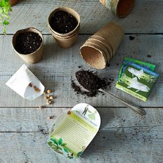 Heirloom Seed Art Packets, Greens & Edible Flowers (Set of 5) on Food52: http://food52.com/provisions/products/956-heirloom-seed-art-packets-greens-edible-flowers-set-of-5 #Food52