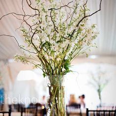 branch centerpieces with candles and smaller bud vases surrounding? white green brown wedding branch centerpieces picture by pinkcaminy photobucket Vase Haut, Grand Vase En Verre, Tall Wedding Centerpieces, Wedding Arrangements, Table Arrangements, Simple Centerpieces, Tall Flower Arrangements, Curly Willow Centerpieces, Willow Branch Centerpiece