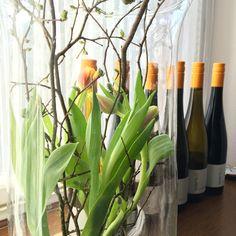 Man(n) nehme ein paar Tulpen und Apfelbaumäste  - und schon duftet es  im Haus nach Frühling ;-) #tulpen #apfelbaum #tabledecor #dekoration #tischdekoration #spring #eastern #winemaker #winery #riesling #werk2 #smalltalk #geisenheim #rheingau #winetasting #mywinemoment #ilikewine  #weingutwerk2