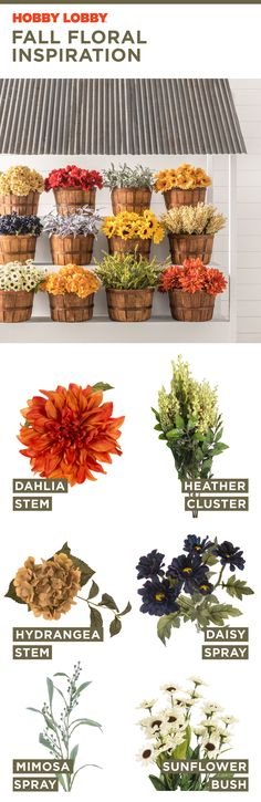 We can't pick a favorite 😍 Mix and match these autumn hues to create your own floral arrangement. Thanksgiving Decorations, Seasonal Decor, Table Decorations, Fall Home Decor, Autumn Home, Family Traditions, Outdoor Projects, Decor Crafts, Floral Wedding