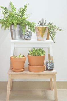 PLANT STAND WITH A MODERN TWIST - STEPSTOOL MAKEOVER