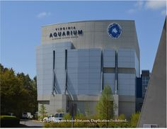 The Virginia Aquarium & Marine Science Aquarium
