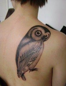 Tatuagens criativas de corujas (89)