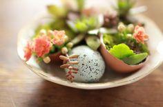 Bricolage décoration printanière – coquilles d'œufs en tant que déco