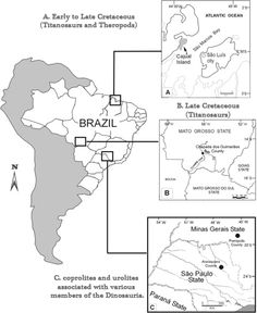 Mapping urolites and coprolites from Mesozoic Brazil.http://blog.everythingdinosaur.co.uk/blog/_archives/2014/12/24/dinosaurs-going-through-the-motions.html