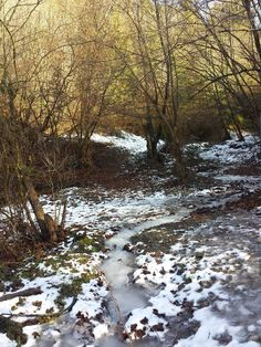Frozen stream 2 by free-gamer4ever.deviantart.com on @DeviantArt