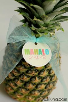 Hawaiian Theme Teacher Appreciation Ideas | My Stuff ...