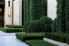 Chengdu Dowell · Yin Yangtze River by JTL Studio Landscape Architecture, Landscape Design, Commercial Landscaping, Green Landscape, Chengdu, Plant Species, Plant Design, Topiary, Hedges