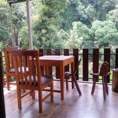 Serene Nature Lodge Homestay in Madikeri - Best Homestay in Coorg