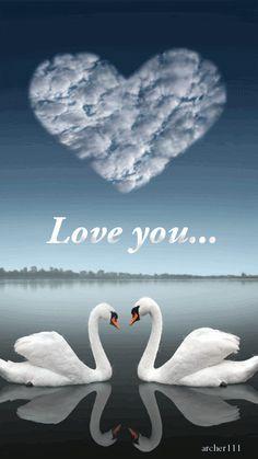 【アヒル  鴨  Duck】       Swan love Swan Love, Beautiful Swan, Beautiful Birds, Animals Beautiful, Cute Animals, Swan Pictures, Ben Heine, Tier Fotos, Love Images