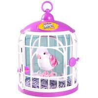 Little Live Pets Bird with Cage - Bella Rina Bird In A Cage, Pet Bird Cage, Little Live Pets, Little Girls, Baby Doll Nursery, Baby Dolls, Doll Bunk Beds, Little Girl Pageant Dresses, Lps Pets