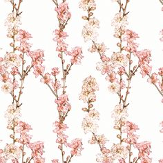 Spring Blossoms from the Royal Botanic Gardens, Sydney, Australia in pink, cherry and white. Fabric designed by:  Kristopher K