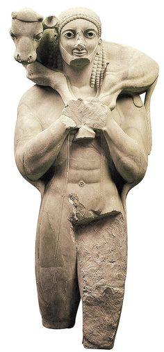 AUTORE: ignoto NOME: Moschphoros DATAZIONE: ca 570-560 a.C. MATERIALE e TECNICA: scultura in marmo dell'imetto a tutto tondo LUOGO DI CONSERVAZIONE: museo dell'acropoli, Atene