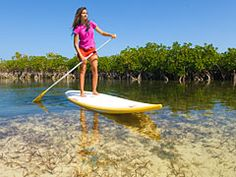 Stand-up paddle boarding is great way to see the sea life in the marshes and mangrove wetlands around Providenciales, Turks and Caicos Islands. Turks And Caicos Vacation, Sup Stand Up Paddle, Western Caribbean, Standup Paddle Board, Sup Surf, Vacation Destinations, Vacations, Water Photography, Windsurfing