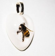 Honey Bee Cast in Resin Heart Pendant by JewelReMotion on Etsy, $23.49