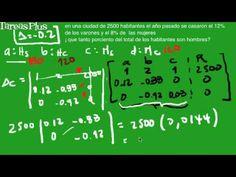 Problema aplicación sistema de ecuaciones en una población parte 2