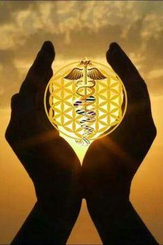 Todos vosotros llegáis al Planeta Tierra como seres lumínicos y están pasando a una nueva era, la era del amor que esta puesta para la sanación, es una era sanadora y se podrán conectar con frecuencias muchos más altas, entrarán en campos multidimensionales con mayor rapidez. Esto es parte de la nueva conciencia que tienen.  La mayoría de vosotros están viviendo momentos cruciales a niveles emocionales, físicos y de gran fuerza interior, a muchos se...