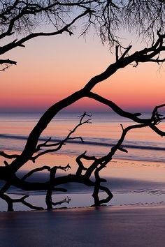 Sunrise - Huntington Island State Park, South Carolina
