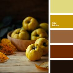 bronze color, burnt orange colour, carrot, copper color, cream, monochrome color palette, monochrome orange color palette, monochrome palette, orange-yellow, yellow and orange, yellow colour, yellow-orange color.
