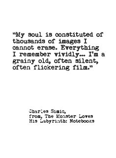 ...a thousand flickering films...
