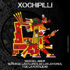 Aztec Symbols, Mayan Symbols, Aztec Religion, Mayan Astrology, Mexican Artwork, Aztec Culture, Aztec Warrior, Aztec Art, Mesoamerican
