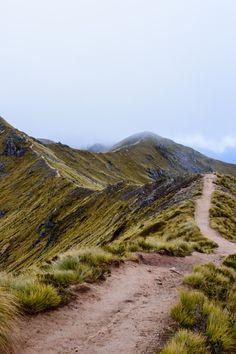 Kepler Track, South Island, New Zealand