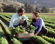 How Earthbound Farm Took Root: Celebrating 32 Years of Organic Goodness | Earthbound Farm Organic