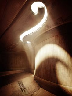 Photographs taken inside musical instruments making them look like large and spacious rooms.