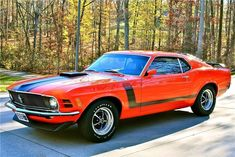 Classic Ford Muscle Cars | 1970 Ford Mustang Boss 302, car, classic, ford, muscle, mustang #fordclassiccars
