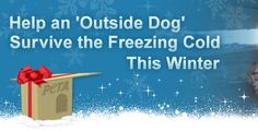 Are you Alone ,noone to buy for this Christmas?  Help an Outdoor  Dog keep warm this winter. Nobody wants to be Cold.