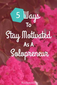 5 Ways To Stay Motivated As A Solopreneur: As a solopreneur you need motivation, direction, and accountability to keep your business growing.
