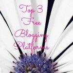Top 3 Free Blogging Platforms