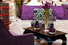 Castillo di Amorosa Sasha Souza Damion Hamilton Detail Photography Purple & Gold Royal Themed Feathers