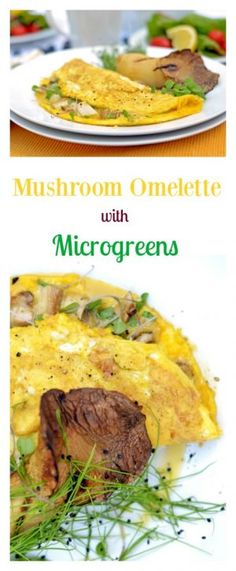 This Mushroom omelette recipe with microgreens features organic microgreens and mushrooms sandwiched within an omelette made from farm-fresh eggs.
