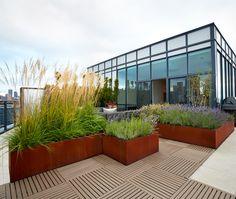 corten planter walls in rooftop terraces Roofing Options, Corten Steel Planters, Residential Roofing, Raised Planter, Backyard, Patio, Rooftop Terrace, Roof Design, Landscaping Plants