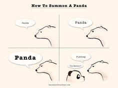 » How To Summon A Panda by Panda and Polar Bear