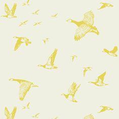 Flock in Flight - Pale Sun