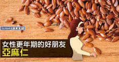 【早安健康/林明慧】更年期,由於卵巢衰退、賀爾蒙急速減少,容易生氣、盜汗、失眠、情緒不穩,讓許多女性深感困擾。日本中醫藥膳師岩田麻奈未表示,許多人會選擇食用大豆...