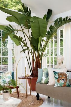 hm home 7 Green and gold spaces you fell in love with this season - Daily Dream Decor Tropical Houses, Tropical Decor, Tropical Interior, Hm Home, Pool Party Decorations, White Houses, Dream Decor, Home Collections, Modern Architecture