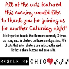 """BROUGHT TO YOU BY THE RESCUE ME OHIO """"HELP ME HOUR""""  Please see our page for how you can help! ~KCS~"""