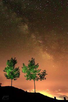 City, trees and Milky I (Cálida)
