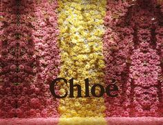 "SAKS FIFTH AVENUE,New York, CHLOE: ""In a bed of roses"" for SAKS GLAM GARDENS,photo by Stylecurated, pinned by Ton van der Veer"