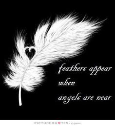 And a feather has appeared. November I am thankful for guardian angels and the loved ones they have protected. Have you ever had an angel experience? 4 Tattoo, Tattoo Feather, Tattoo Quotes, Angel Quote Tattoo, White Feather Tattoos, Pray Tattoo, Angels Tattoo, Feather Tattoo Meaning, Lace Tattoo