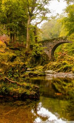 Foley's bridge and the Shimna River in Tollymore Forest Park - Co Down, Northern Ireland