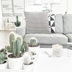 Check www.littledeer.nl voor mooie, vintage woonaccessoires. #Inspiratie #Cactus…