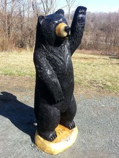 Chainsaw Black Bear // Waving hello or giving a #SicEm?