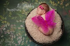 Fairy Glitter Butterfly Wings, newborn, Baby, Photography prop, Wedding, Choose Colors FREE SHIPPING USA