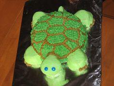 Turtle Cake - Cake Decorating Community - Cakes We Bake