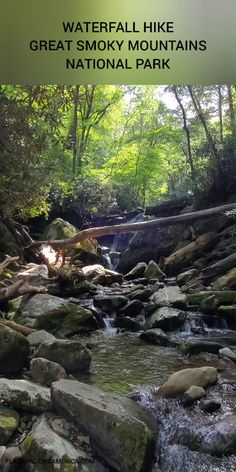 Smoky Mountains Hiking, Great Smoky Mountains, States America, United States, Most Visited National Parks, Vacation Ideas, Vacation Spots, Waterfall Hikes, Mountain Vacations