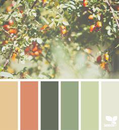Living Room Decor Green Orange Design Seeds 63 Trendy Ideas - Home Decor Color Schemes Colour Palettes, Orange Color Palettes, Green Color Schemes, Green Colour Palette, Green Colors, Green Bedroom Colors, Colours That Go With Grey, Color Combinations, Grey Colour Scheme Bedroom